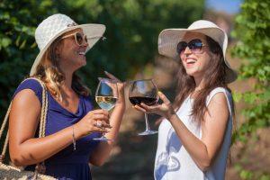 divino wine tours - trentino - tdv