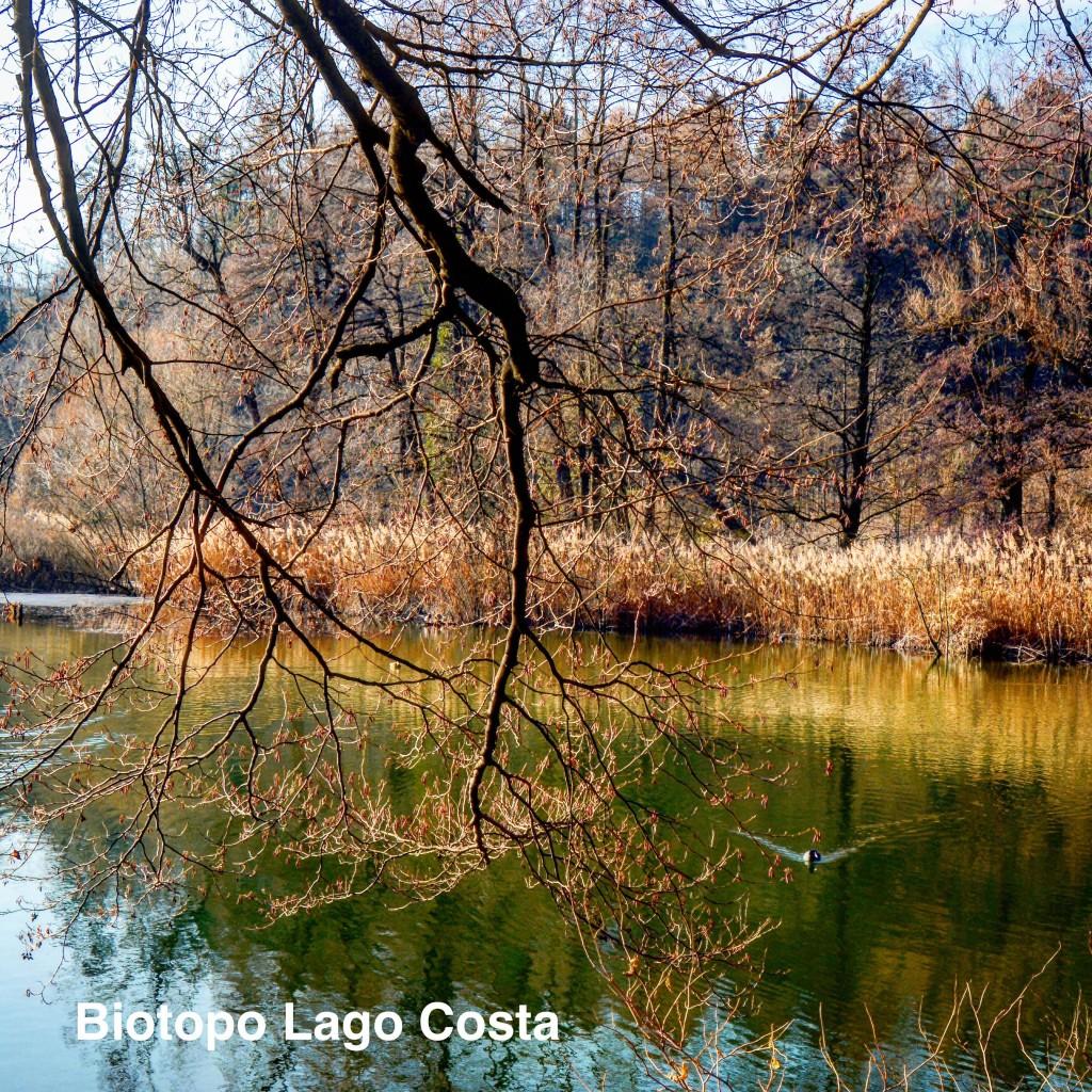 lago Costa